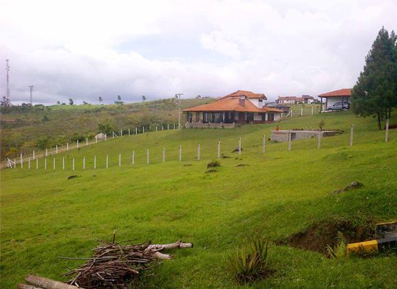 Lote Campeste 239